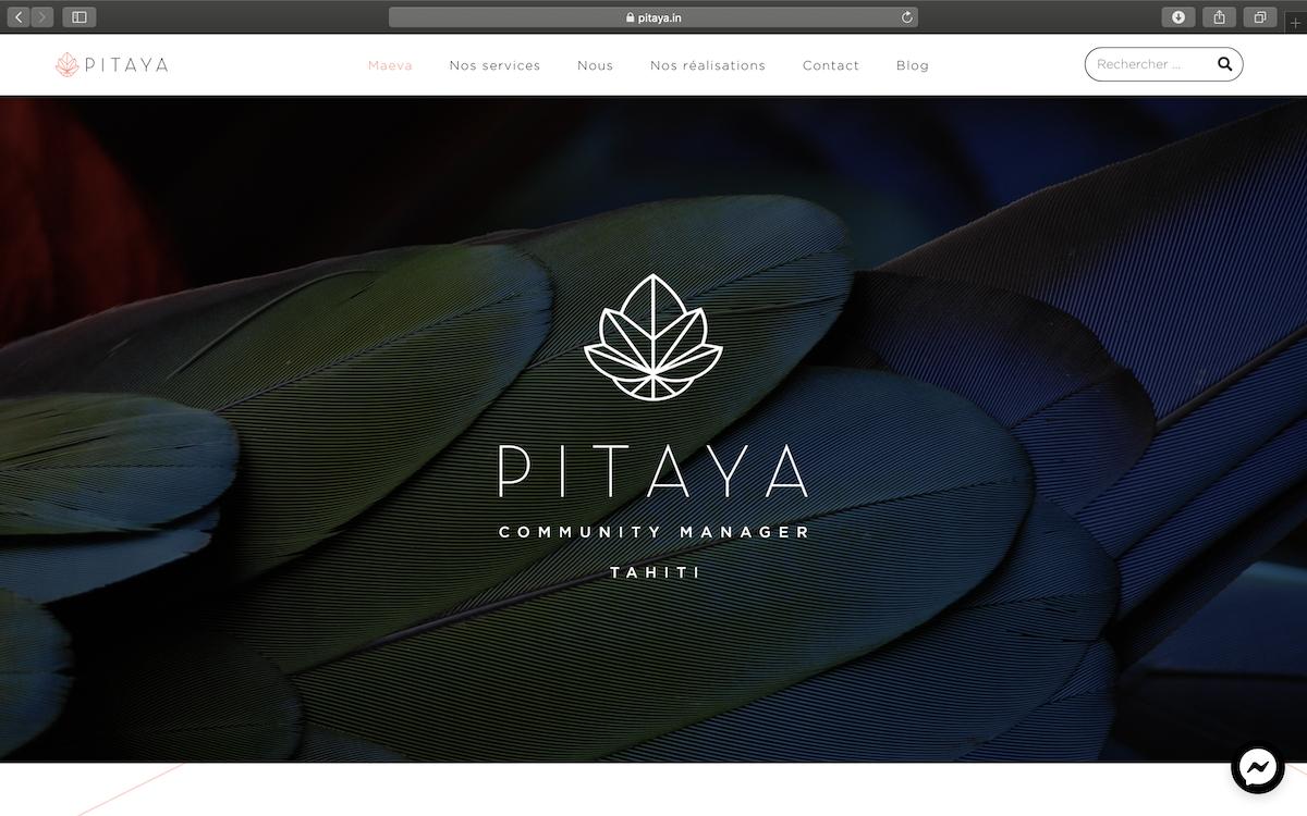 Pitaya.in